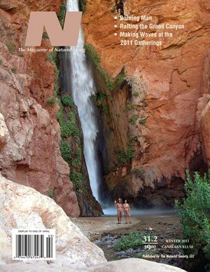 N - Winter 2011/2012 – Volume 31, Issue 2 - Click Image to Close
